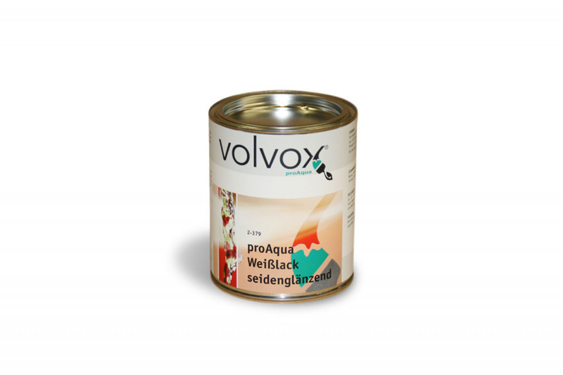 media/image/Volvox-WeisslackwZtbWuS9P45dy.jpg
