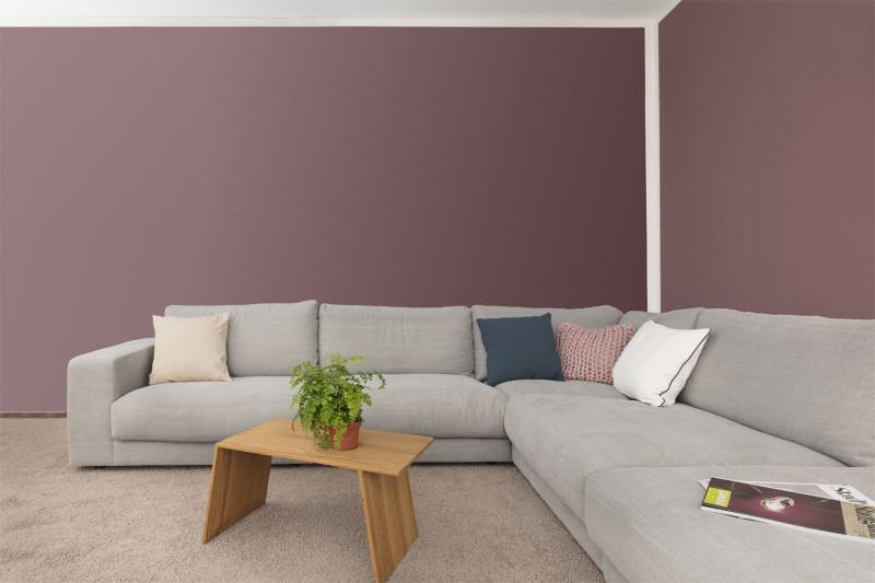 AURO Colours for Life Premium Wand- und Deckenfarbe Nr. 555